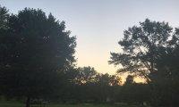Purple swing as the sun sets