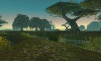 Campfire in Wetlands