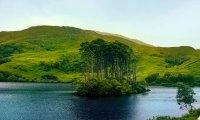 Meditation by the Black Lake