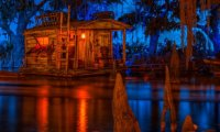 Floating through the Bayou