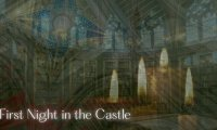 First Night in the Castle