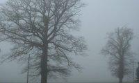 Light rain on a misty day