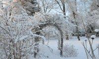 A Snowy Day on La Rue Plumet