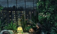 The urban jungle will calm your nerves
