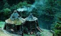 Hagrid's