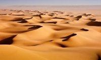 Sailor's Desert