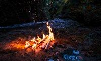 Campfire in Dark Forest
