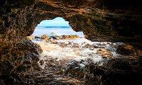 Sea Cave Dragon Stable
