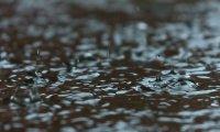 Late Summer Rain