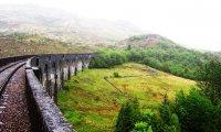 Hogwarts Express in Spring