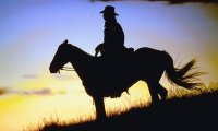 Cowboy, cowboy.