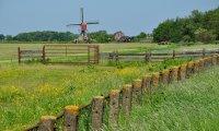 Een dag in de polder
