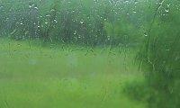 Hogwarts Express (rain)