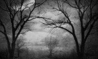 A subtle spooky atmosphere