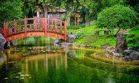Japanese Garden Rain Song