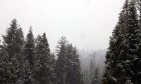 Winter's Blood - A Dread Scenario Ambiance