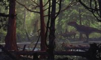 Ambience for Jungle in DnD