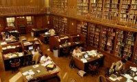 Autumn Library