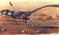 Late Cretaceous Montana Forest