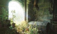 Skyhold's herb garden