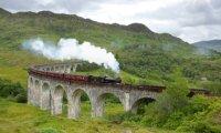 Hermione go to Hogwarts