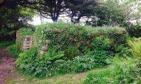 Abhorsen's Garden