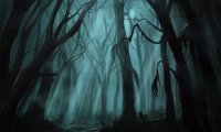 D&D The Haunted Wood adventure