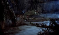 Inside Yoda's Hut on Dagonah