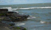 Forgotten Tide