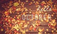 Autumn Breeze Atmosphere