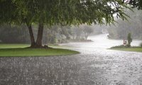 Heavy rain storm with thunder