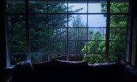 Soft rain, soft bedsheets, soft breathing