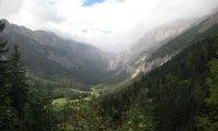 Varecund Valley Life