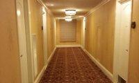 Hotel Overnight