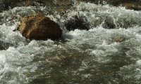 rushing river moving stones