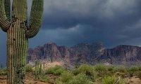 Southwest Desert Rain