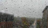 Urban rainy day in traffic