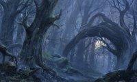 Svalich Woods
