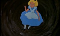 Down the rabbit hole you go