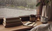 Studying On A Rainy Morning