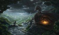 dragon flight in the rain