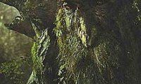 A Night at Treebeard's