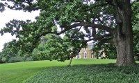 Tudor Place South Lawn