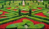 parfum palace gardens
