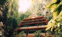 Forest Temple Meditation