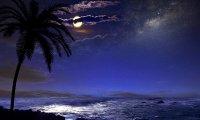 Starry night on Varkala beach