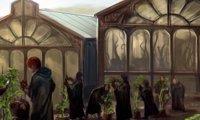 Harry Potter, Greenhouse, Cottagecore