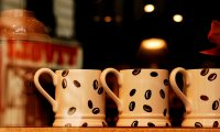 Quiet Cafe to study