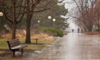 Rainstorm with heavier rain and wind