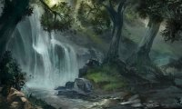 Forest of ancients